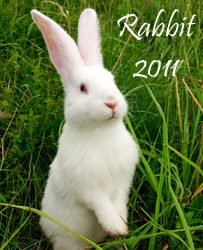 http://www.sacredfengshuidesign.com.au/images/stories/rabbit%202011%20copy.jpg